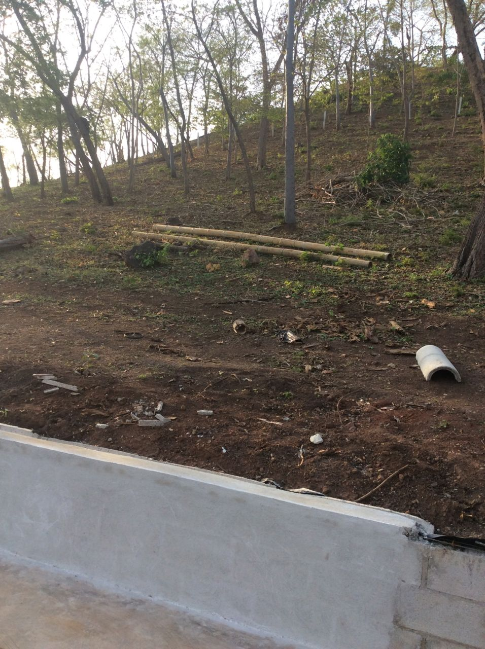 Slope above retaining wall